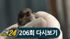 구조, 치료, 재활까지?! 생사의 기로에 있는 야생동물을 지키는 '야생동물재활관리사'