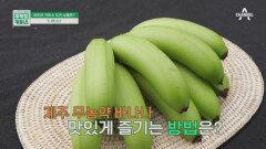 덜익은 초록색 바나나를 판매하는 이유는?