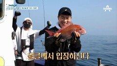 [선공개] 이것이 클라스의 차이?! 그냥 대~충 해도 참돔 잡아 버리는 김병현