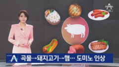 곡물→돼지고기→햄…돼지고기 값 도미노 인상