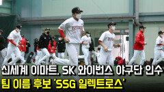 신세계 이마트, SK 와이번스 야구단 인수…팀 이름 후보 'SSG 일렉트로스'