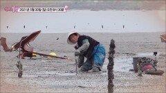 엄마의 바다_엄마의 봄날 298회 예고 TV CHOSUN 210530 방송