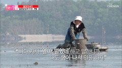 갯벌 위를 달려달려↗ 낙지 찾아 삼만리🐙 TV CHOSUN 20210530 방송