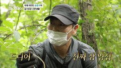 자연인 송종국의 삼 영접을 위한 후덜덜한 악산 등반 TV CHOSUN 20211003 방송
