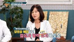 젊음과 활력의 비결! 『○○○○』로 하자! TV CHOSUN 20210912 방송