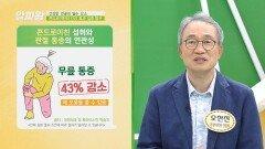 무릎 통증 이젠 안녕 콘드로이친의 건강 효과🦵   JTBC 210902 방송