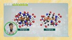 피부 미인의 단골 비결 어류 콜라겐이란?   JTBC 210916 방송