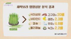 건강과 다이어트를 한 번에 책임져주는 「새싹보리」   JTBC 210717 방송