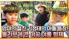 핫클립 초등학생이 6개국어!? 김현숙의 20년 지기 김정태의 천재 아들 야꿍 야롱 형제|JTBC 211013 방송