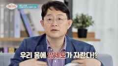 하루 '최대 오천 개'까지 우리 몸에서 만들어지는 ㄴ암세포ㄱ   JTBC 210526 방송