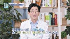 연골 손상 막고 보행 속도 개선하는 「콘드로이친」   JTBC 210426 방송