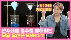 탄수화물 흡수를 방해하는 'BNR17' 다이어트에 효과적! | JTBC 211012 방송