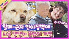 첫 만남부터 심상치 않은 언어장벽🤦 급기야 개명 당한(?) 시골 강아지   JTBC 210525 방송