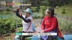 돌보지 못한 건강 때문에 죽음의 위기까지 맞이했던 배연정😢   JTBC 210611 방송