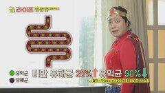균형이 깨져 비만을 유발하는 유해균 '장내 세균'   JTBC 210625 방송