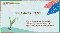 동의보감에도 실린 산속 건강 약재 「일엽초」   JTBC 210625 방송