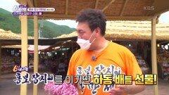 [홍보장사 만만세] 한가위의 달콤한 선물, 배 - 경남 하동   KBS 210921 방송