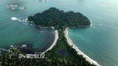 코스타리카에서 가장 아름다운 해변이라는 자연 그대로의 모습을 간직한 마누엘안토니오 | KBS 210814 방송