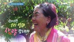 [사랑합니다 당신] 원더우먼 우리 엄마, 사랑합니다 | KBS 210717 방송