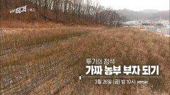 [예고] 투기의 정석 - 가짜 농부 부자 되기  시사직격 67회   KBS 방송
