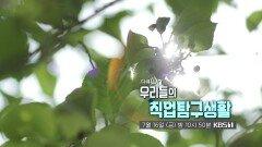 [예고] 우리들의 직업탐구생활   KBS 방송