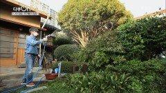 세월을 안고 있는 주택가 속 정원   KBS 211009 방송