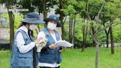 공공정원 만들기, 정원드림 프로젝트   KBS 211009 방송