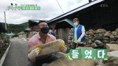 83세 어머니 댁의 무너진 돌담을 쌓아라!   KBS 210924 방송