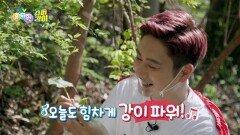 [슈퍼강이] 잎은 심장모양! 좋은 향기가 나는 취나물♥ | KBS 210610 방송