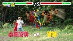 [슈퍼강이] 밤꿀을 먹고 말벌들을 물리치자!!   KBS 210916 방송