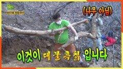 땅속의 대물 흑칡을 찾아라! 무려 약 4m 대물 발견☆ 나무를 캔건지~ 칡을 캔건지ㄷㄷ   KBS 210301 방송