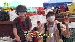 추석 대목 부여 5일장&밤 수확 일손 돕기   KBS 210917 방송