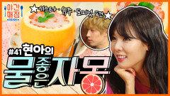 [해피투게더 야간매점 #41] - 상콤달콤 국물까지 맛있는 물좋은자몽   KBS 방송