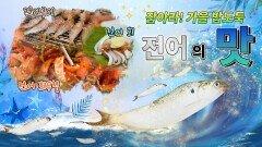 잡아라 가을 밥도둑! 전어의 맛 [대케맛] / KBS대전 방송