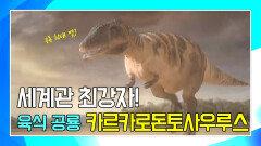 엄청난 크기의 육식 공룡 카르카로돈토사우루스 [공룡의 왕국 Deadly Dinosaurs]