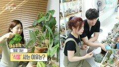 잎 한 장에 50만 원? 희귀식물 마니아, MBC 210610 방송