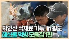 《스페셜》 황도 해산물 파티! 자연산 해산물 먹방 모음집 1편, MBC 210503 방송