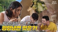 """""""평양냉면은 말이야~"""" 맛잘알 인도인의 평양냉면 먹팁 대공개 / 별다리 유니버스"""