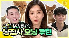 《스페셜》 유아인X정려원X윤균상ㅣ🧡고양이와 함께하는 냥집사들의 모닝 루틴🌅😺, MBC 200619 방송