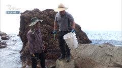 물속에 숨어있던 보물들이 나온다! 바다가 선물해주는 오늘의 반찬거리는?! MBN 211020 방송