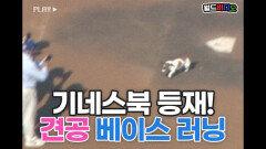다리가 안 보일 정도!? 기네스북 등재된 강아지 주루