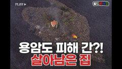 용암도 피해 갔다? 기적처럼 살아남은 집