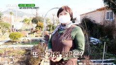 ✿넓은 정원✿을 관리하는 그녀만의 특별한 방법은? (・̑◡・̑) MBN 210224 방송