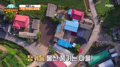 단양엔 연극하는 농부들이 있다?! 예술이 흐르는 산골마을! MBN 210923 방송