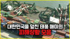 2003년 대한민국을 덮친 초강력 태풍 매미
