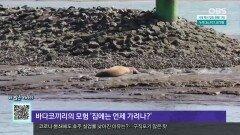 [오늘의 세계] 마약왕 호아킨 구스만 은신처 ′복권 경품으로′