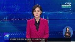 [OBS 인섬 뉴스] 대청도 소식…삼치 잡이 한창