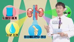 우리 몸속 정수기 '콩팥'의 역할! (닥터필생기)