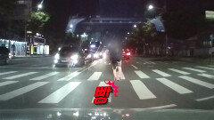 영역을 침범하는 도로 위 침입자들!