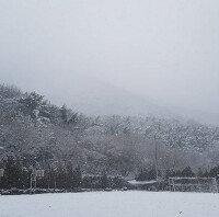 """""""겨울왕국 떠올라""""…부산지역, 올해 첫 눈 '펑펑'"""
